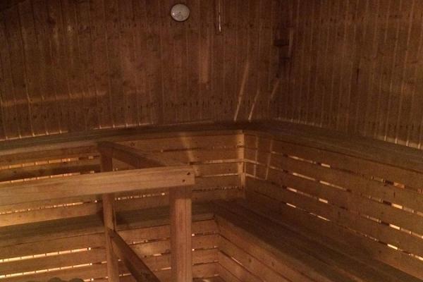 Essu Mõisa saun