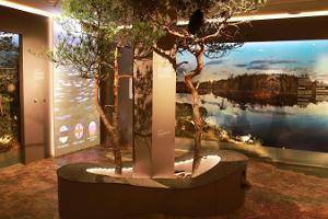 Estlands Naturmuseum