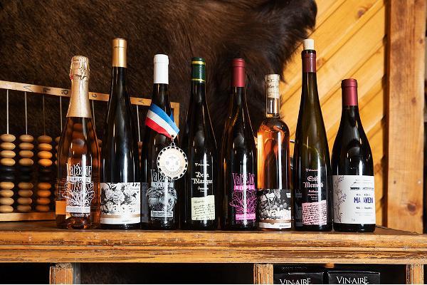 Besök till vingården Valgejõe Veinivilla