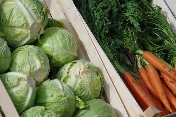 Freiluftmarkt in Tartu: knackiger Kohl und Karotten