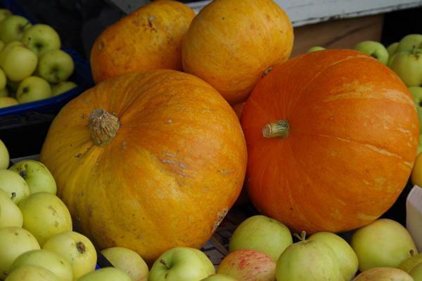 Freiluftmarkt in Tartu: Kürbisse und Äpfel, große und kleine