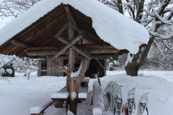 Snowshoe hike in Linnumäe Nature Farm
