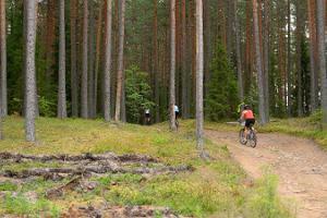Велосипедная дорога Агусалу