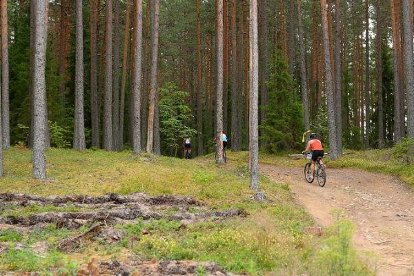 Agusalu Bike Trail