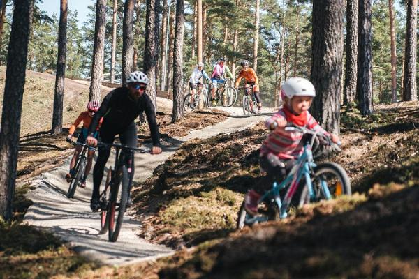Fahrradwege im Kiefernwald am Gesundheitssportzentrum Jõulumäe