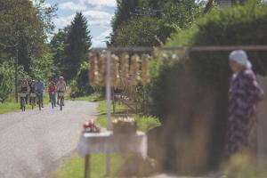 На велосипеде по Луковому пути: из Алатскиви в деревню Нина