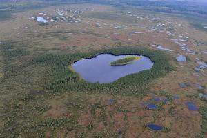 Tour auf eigene Faust ins estnische Herz für Wanderer und Ausflügler nach Kõrvemaa