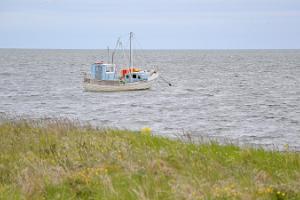 Guided tour of Saaremaa, Sõrve peninsula