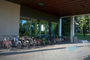 Pühajärve Spa and Holiday Resort bike rental