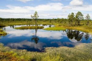 Itsenäinen kierros Jumindan ja Pärispean niemellä. Virtuaalinen opas.