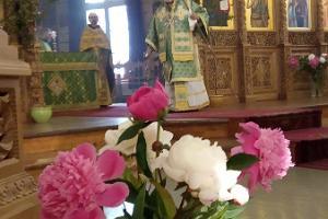 Tallinas Svētā Sīmeona un pravietes Hannas baznīca