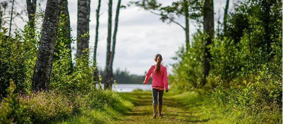 Coastal hiking in Estonia