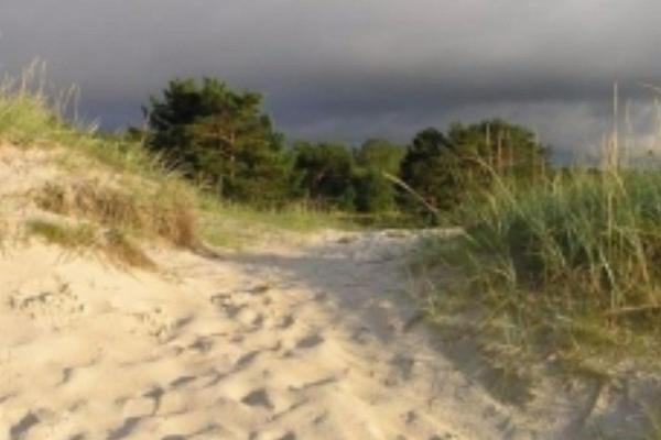 Laulasmaa–Lohusalu hiking trail
