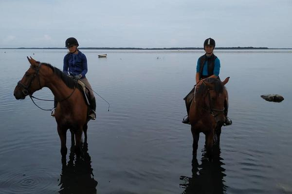 Ratsamatk männimetsades ja mere ääres