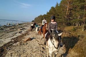 Ratsastusretki mäntymetsiin ja meren rannalle