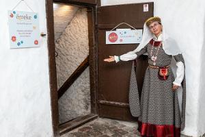 Promenad i Tallinns gamla stad med besök till studio Örrekese