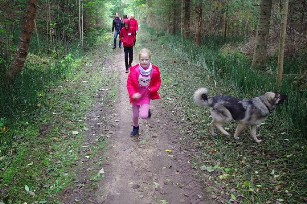 Hiking trail 'Green Railways' Viljandi–Mõisaküla