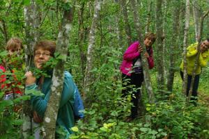 Matkapesa fotojaht Väinjärve ääres