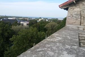Piiskopi observation platform