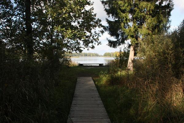 Pühajärven luontopolku, Koolirand