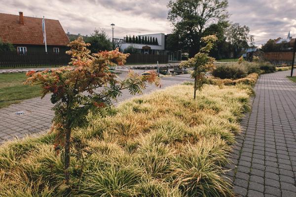 Arkaadia aed