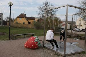 Mansikat Viljandissa