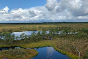 """One day nature tour """"Picturesque wilderness in Marimetsa bog"""""""