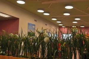 Võru Nöörimaa Toidukeskuse söögisaal