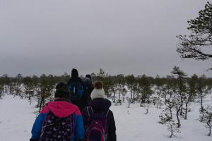 Geführte Tour im Hochmoor Viru