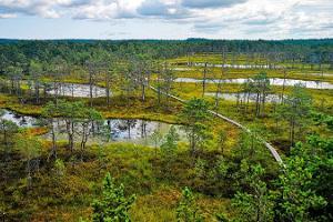 Päevareis Lahemaa Rahvusparki algusega Tallinnast