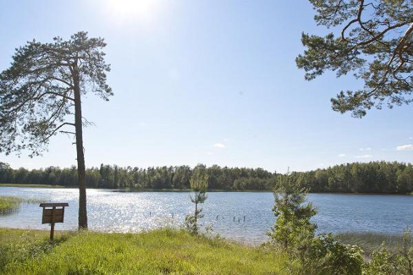 Giidiga jalgsimatk Kurtna järvestikus