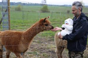 A visit to the Paasiku Dogs