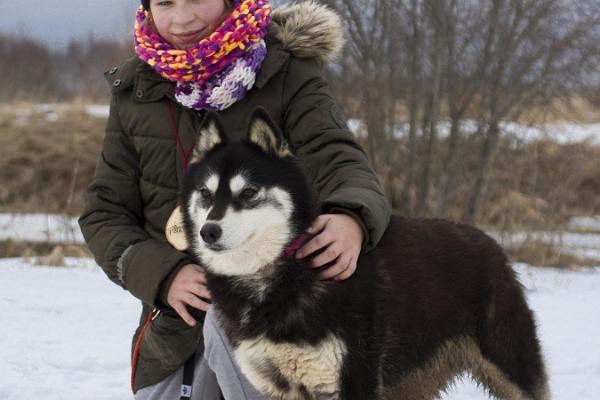 Matk Siberi huskydega