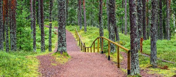 Oandu hiking trail, Visit Estonia