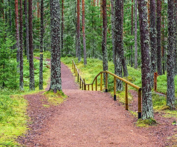 Oandu hiking trail, Visit Estonia