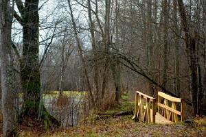 Pauna hiking trail