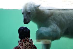 Tallinas Zoodārzs