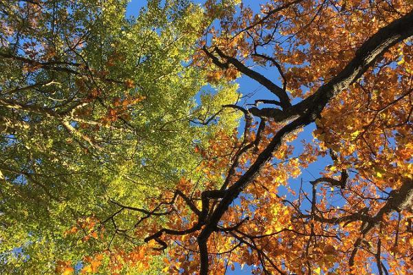 Päivän luontoretki Tabasalun luonnonpuistossa