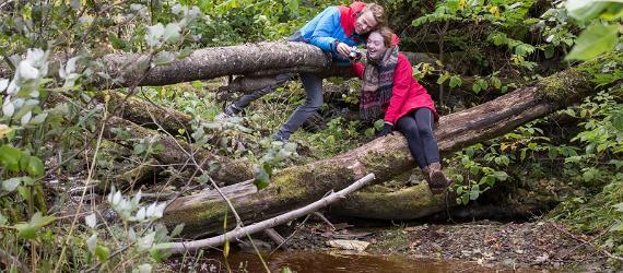 Ida-Virumaal ootavad uued seiklused