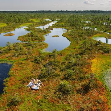 Picnic in the bog. Visit Estonia