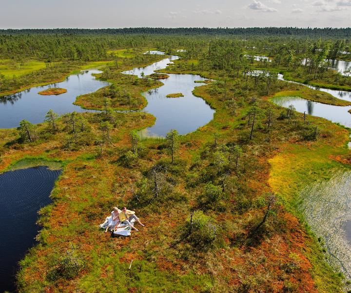 Picnic in the bog. Visit Estonia