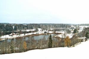 Смотровая башня Pesapuu («Дерево с гнездами») в Рыуге