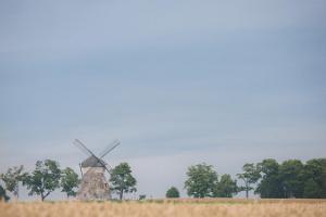Mühle zu Kuremaa