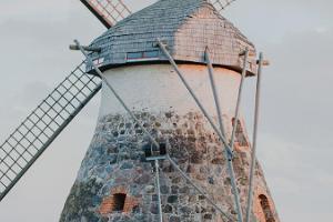 Kuremaa mill