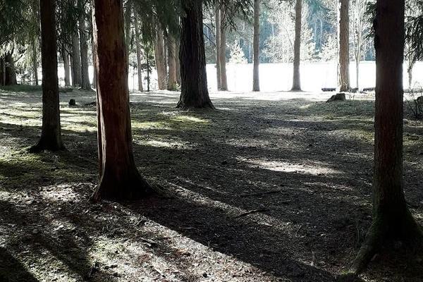 Väike Väerada (Lilla Kraftled) och Stilla insjön och rastplatsen som syns genom skogen