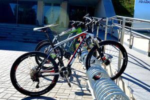 Tehvandi-polkupyörärata