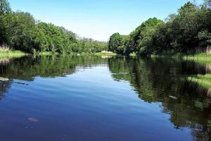 Izbrauciens ar SUP dēli pa Saugas upi