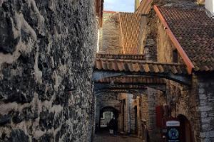 Keskaegse Tallinna tuur koos elu ja surma üle mõtisklemisega