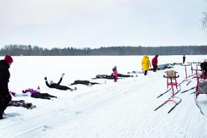 Kicksled trip in Taevaskoja with mulled wine, cocoa or tea