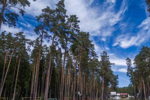 Wohnwagenpark des Gesundheitssportzentrums des Kreises Tartu